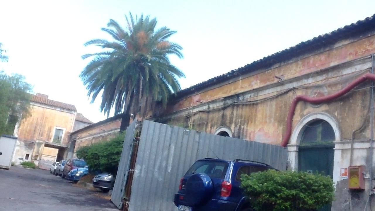 Risultati immagini per foto dell'istituto incremento ippico catania