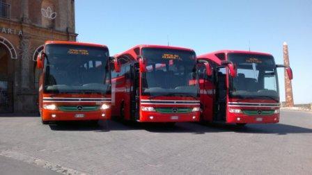 Da Messina a Catania in bus  ma il cane non può salire ...