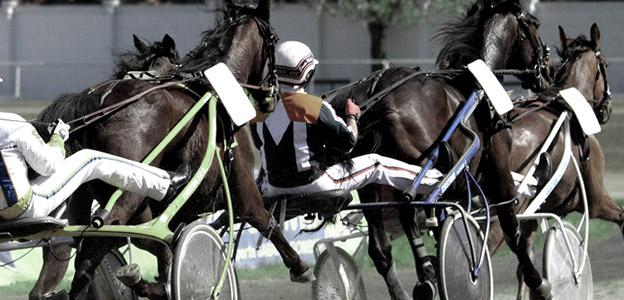 anemia, cavalli, fantini, ippodromo, palermo, processo, proprietari, test, Cronaca