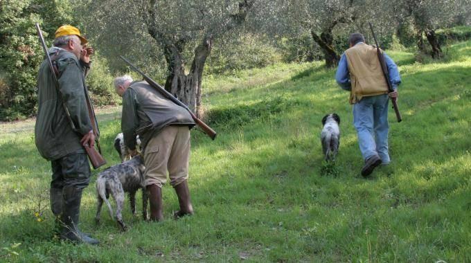 Calendario Venatorio Sicilia.Il Tar Da Ragione A Cracolici La Caccia Parte Prima In