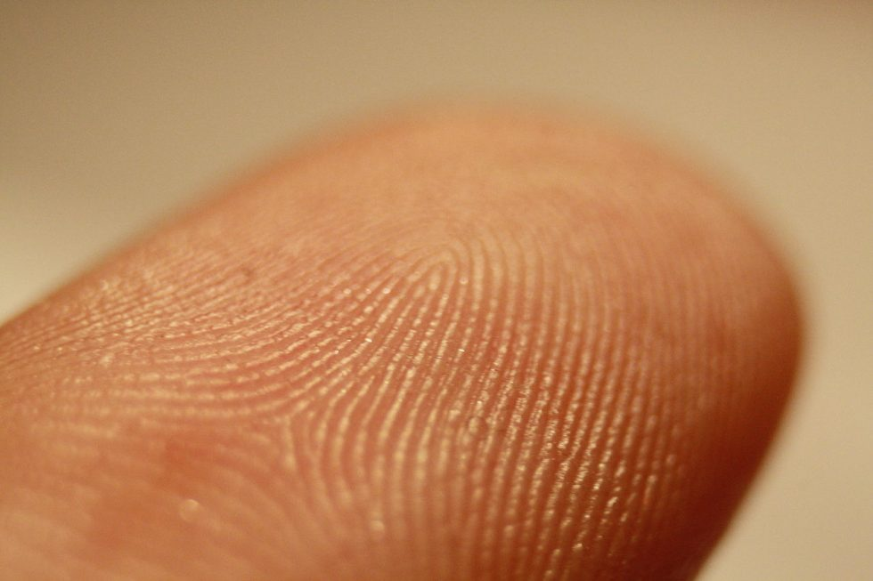 Impronte digitali non uniche, crolla mito: