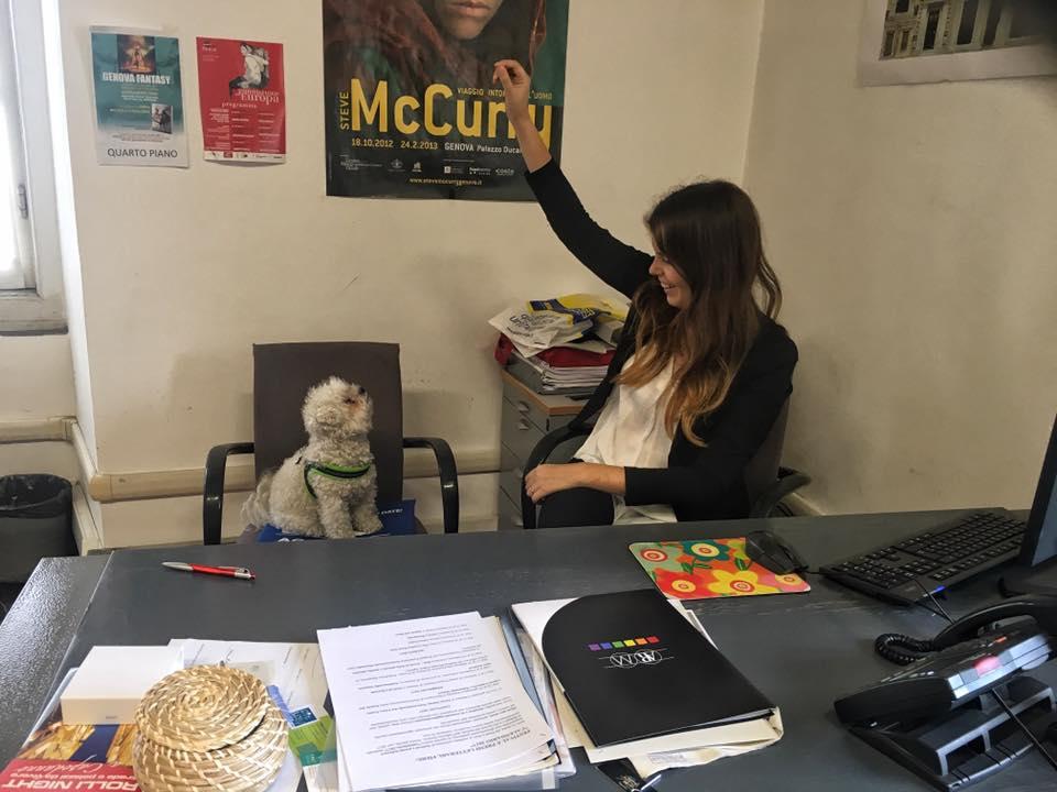 Genova: in Comune si possono portare i cani al lavoro