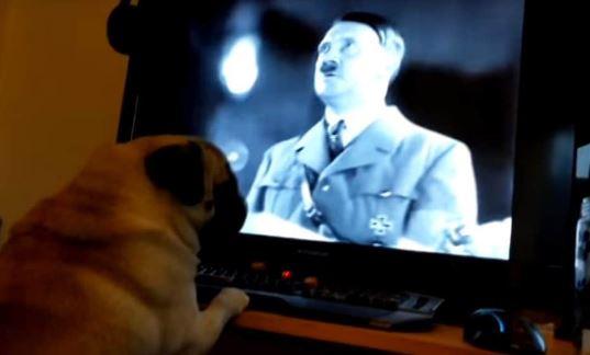 Insegnò al cane il saluto nazista