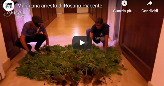 Un frame del video realizzato dai carabinieri