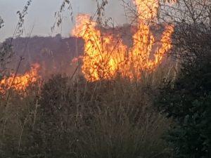 Incendi, fiamme su Ss417: traffico bloccato a Ramacca