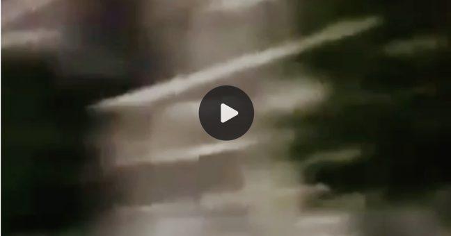 video rissa catania